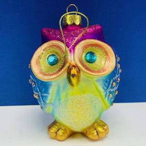 Owl Christmas ornament rainbow holiday decor birds